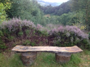 A bench I sat on today at Devil's Bridge