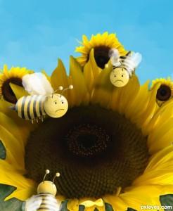 Sad bees
