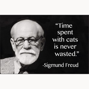 Freud next to a quote he didn't say